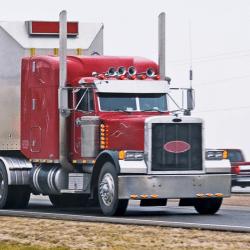 fleet manager driving a truck pulling a livestock trailer