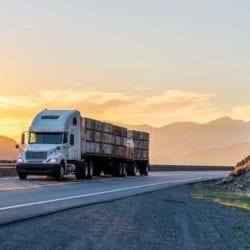 choosing the right eld